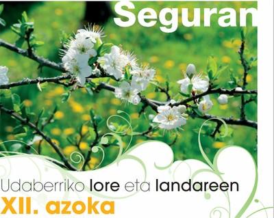 XII feria de plantas y flores en Segura