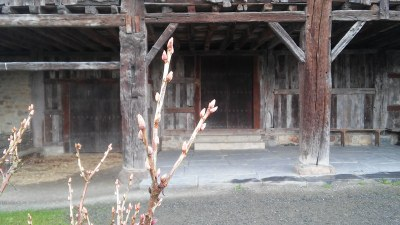Savia huerto y entorno Igartubeiti