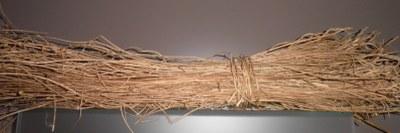 Lino seco de Igartubeiti