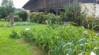 El huerto de Igartubeiti y su entorno en octubre