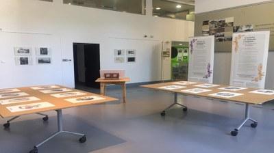 Exposición Mitos y leyendas del Pirineo en el Centro de Interpretación de Igartubeiti