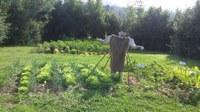 La huerta y el entorno de Igartubeiti en Agosto
