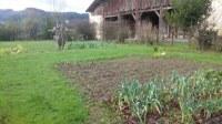 La huerta y el entorno de Igartubeiti en enero