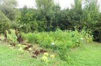 La huerta y el entorno de Igartubeiti en septiembre