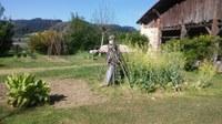 La huerta de Igartubeiti  y su entorno en mayo